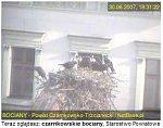 http://images24.fotosik.pl/12/9b488750e8000718m.jpg