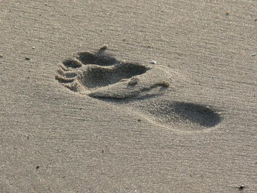 To tylko ślad #plaża