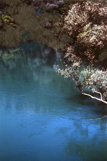 Sana, Bosnja (twarze???!!!...) #rzeka #woda #krzewy #twarze