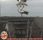 http://images24.fotosik.pl/178/e1a3cf95122716d7m.jpg