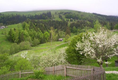 Wyprawa Ukraina ( Ziemia Kijowska ), Huculszczyzna - maj 2008