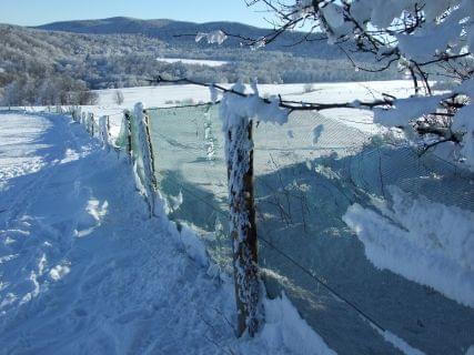 Puławy k/Rymanowa #Bieszczady #Kiczera #Lesko #narty #Puławy #śnieg #Weremień
