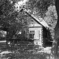Rossosz, Sierpień 2008 #Wieś #Rossosz #dom #chata #natura