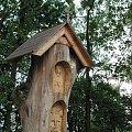 kapliczka w Holi #kapliczka #drewno #Polesie