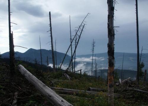 Osobita - widok z Furkaski #góry #Tatry #Zachodnie #Osobita #Furkaska
